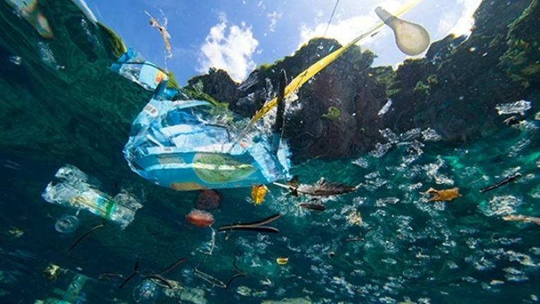Σακούλες, κουτιά αλουμινίου και μπουκάλια το 50% των απορριμμάτων στις ελληνικές θάλασσες