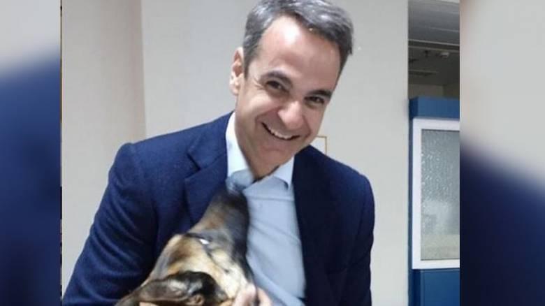 Ο σκύλος του Κυριάκου Μητσοτάκη μπήκε στη… βαλίτσα του