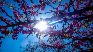 Καιρός Πάσχα: Με τι καιρό θα σουβλίσουμε τον οβελία