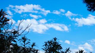 Καιρός Πάσχα: Με λιακάδα και κοντομάνικο το ψήσιμο του oβελία