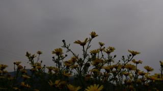 Καιρός: Βροχές και καταιγίδες την Πέμπτη