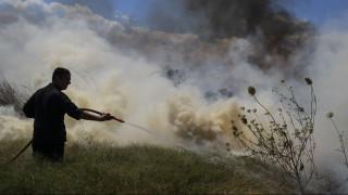 Συναγερμός στη Χαλκιδική: Φωτιά στη Σιθωνία