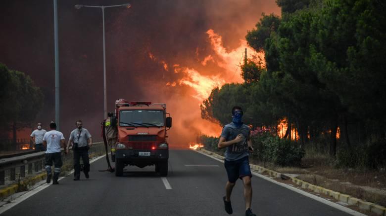 «Έχει νεκρούς αλλά δεν τους ανακοινώνουν»: Συγκλονιστικές αποκαλύψεις για την πυρκαγιά στο Μάτι