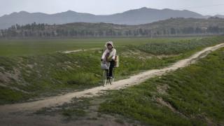 Στα πρόθυρα του λιμού: Η Βόρεια Κορέα μειώνει τις μερίδες φαγητού σε 300 γραμμάρια ημερησίως