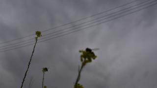 Άστατος ο καιρός και την Κυριακή με καταιγίδες και σκόνη