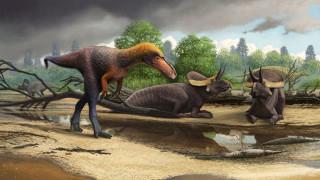 Ανακαλύφθηκε πρόγονος του Τυραννόσαυρου στις ΗΠΑ