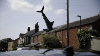 Πώς βρέθηκε ένας καρχαρίας σε μια σκεπή στην Οξφόρδη; Μια ιστορία ανατρεπτικότητας και επιμονής