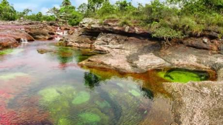 «Υγρό ουράνιο τόξο»: Ένας ποταμός χρωμάτων στην Κολομβία