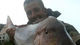 Έκανε την ψαριά της ζωής του: Έπιασε συναγρίδα 15,5 κιλών