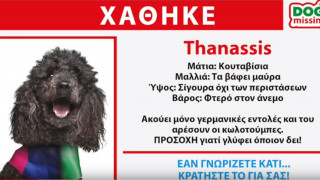 Ευρωεκλογές 2019: «Amber alert» για τον Thanassis από τους ΑΝΕΛ – Το νέο σποτ του κόμματος