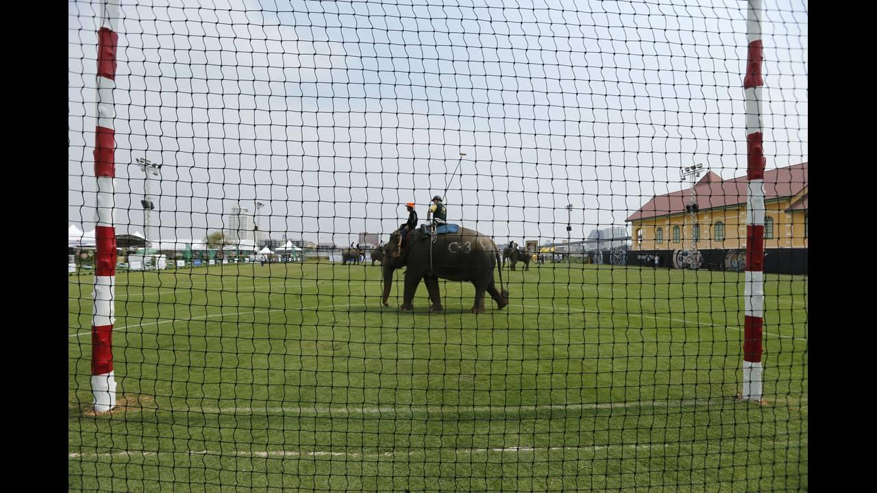 https://cdn.cnngreece.gr/media/news/2019/05/15/176812/photos/snapshot/THAILAND-ELEPHANT-POLO-REUTERSJorgeSilva10.jpg