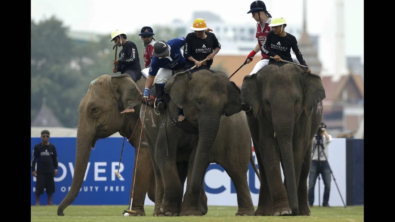 https://cdn.cnngreece.gr/media/news/2019/05/15/176812/photos/snapshot/THAILAND-ELEPHANT-POLO-REUTERSJorgeSilva8.jpg