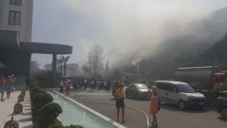 Ρόδος: Φωτιά στο Φαληράκι αναστάτωσε τουρίστες και ξενοδόχους