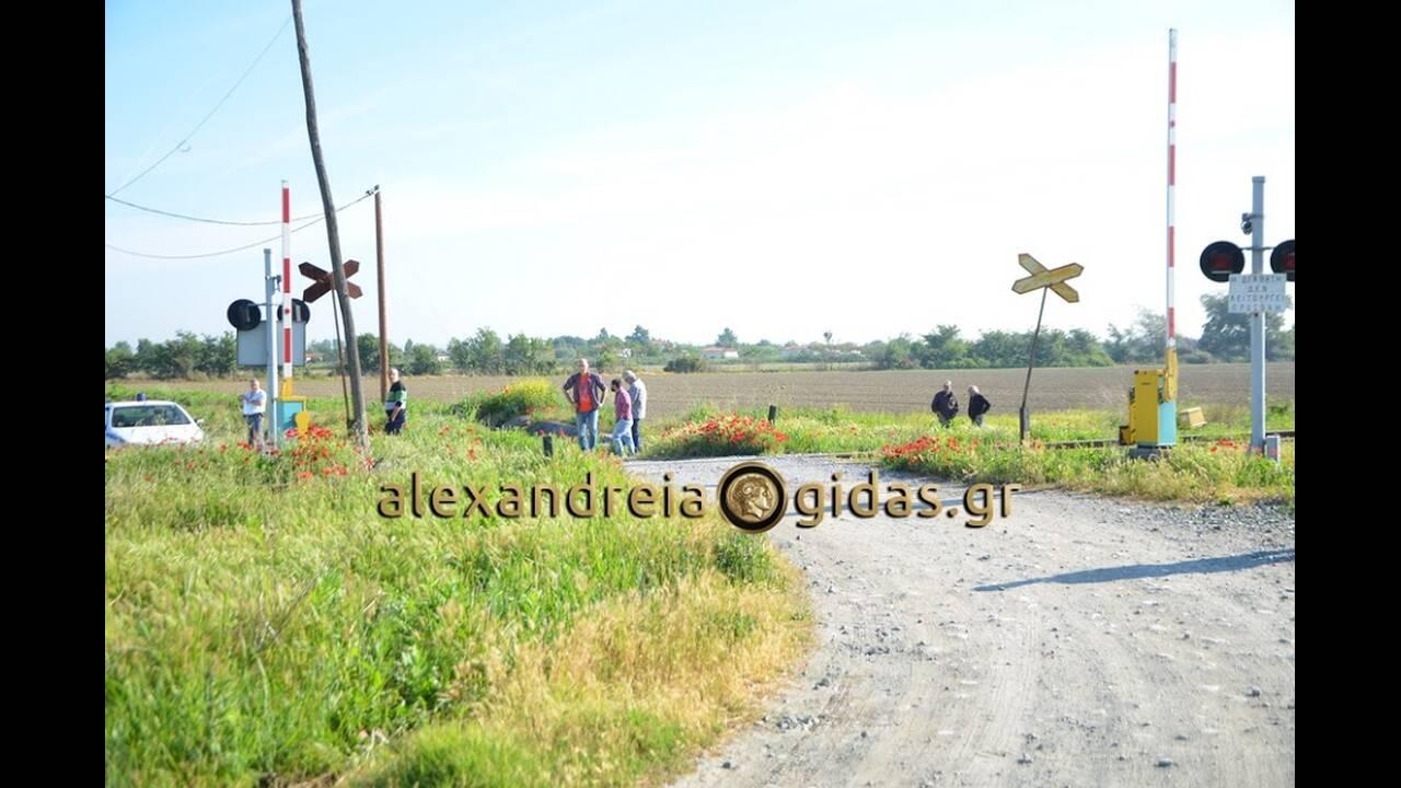 https://cdn.cnngreece.gr/media/news/2019/05/18/177144/photos/snapshot/DSC_1071www.alexandreia-gidas.gr.jpg