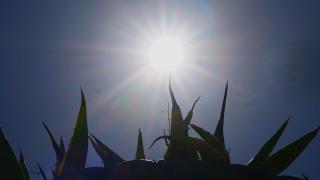 Καιρός: Άνοδος της θερμοκρασίας και σκόνη την Κυριακή