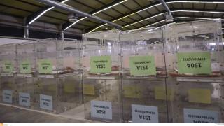 Πού ψηφίζω: Βρες το εκλογικό σου κέντρο με ένα «κλικ» στην εφαρμογή του ypes