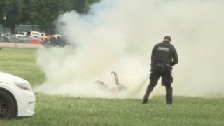 Βίντεο: Η στιγμή που αυτοπυρπολήθηκε ο άνδρας κοντά στον Λευκό Οίκο