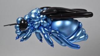 Ο καλλιτέχνης που φτιάχνει εξωτικά πλάσματα από χρωματιστά μπαλόνια