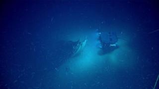 Αναπάντεχη ανακάλυψη: Ωκεανογραφικό «σκόνταψε» πάνω σε ναυάγιο