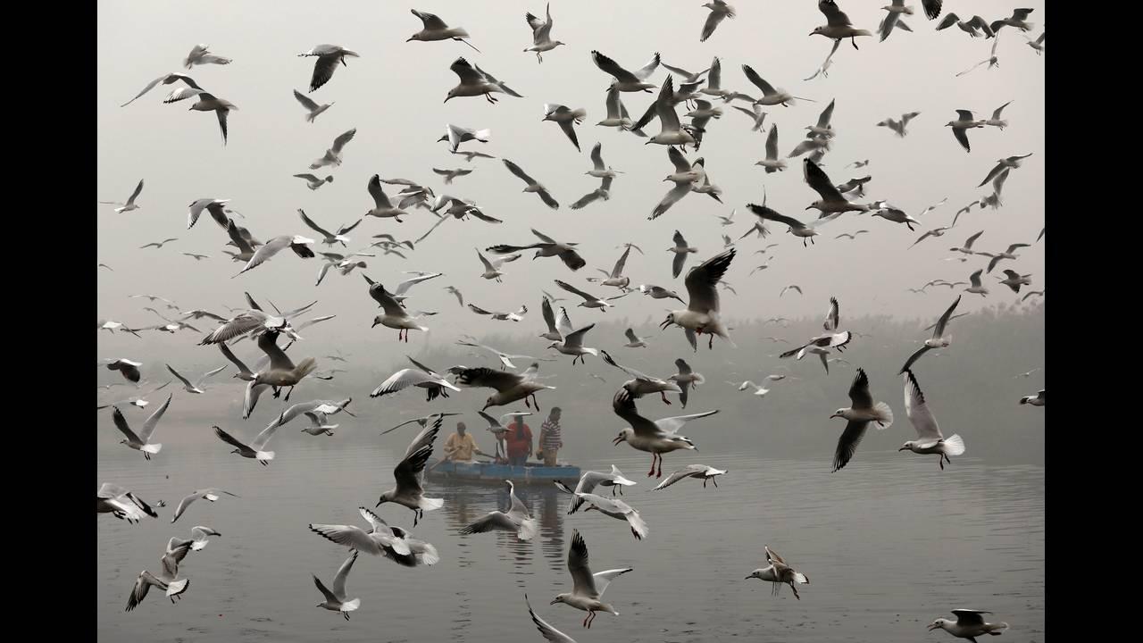 https://cdn.cnngreece.gr/media/news/2019/06/05/179516/photos/snapshot/2017-11-08T094613Z_815312919_RC12BEE01A00_RTRMADP_3_INDIA-POLLUTION.JPG