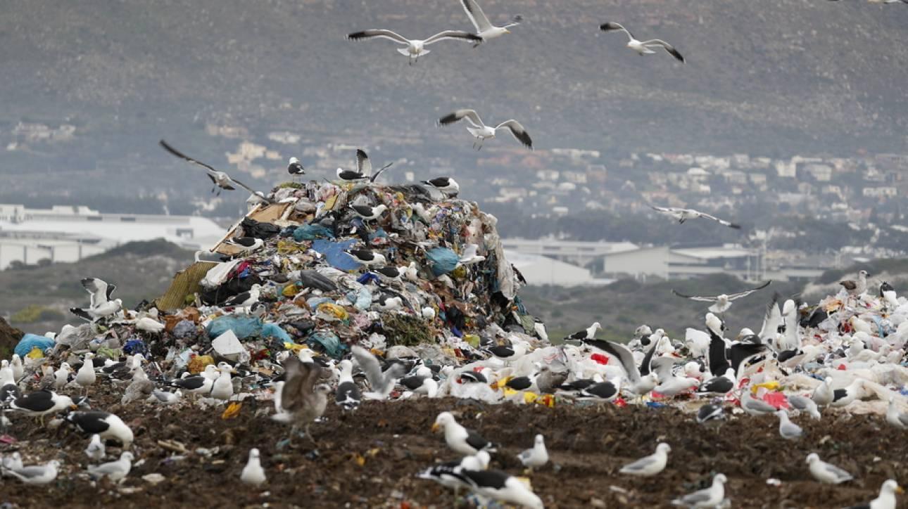 Ένα νέο νησί στη Μεσόγειο και ένα νέο βουνό στην Ινδία δημιουργούνται από... πλαστικά σκουπίδια