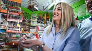 Γεννηματά από Μοναστηράκι: Η μικρομεσαία επιχείρηση χρειάζεται ουσιαστική στήριξη