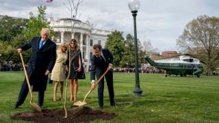 Ξεράθηκε το δέντρο-σύμβολο της φιλίας των Ντόναλντ Τραμπ και Εμανουέλ Μακρόν