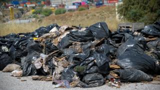 Η απόλυτη εγκατάλειψη: Εικόνες ντροπής και ανατριχίλας στο νεκροταφείο Σχιστού