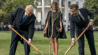 Τι απαντά ο Μακρόν για τη βελανιδιά - σύμβολο της φιλίας του με τον Τραμπ που ξεράθηκε