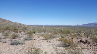 ΗΠΑ: 6χρονη προσφυγοπούλα πέθανε από θερμοπληξία στην έρημο ενώ η μητέρα της έψαχνε για νερό