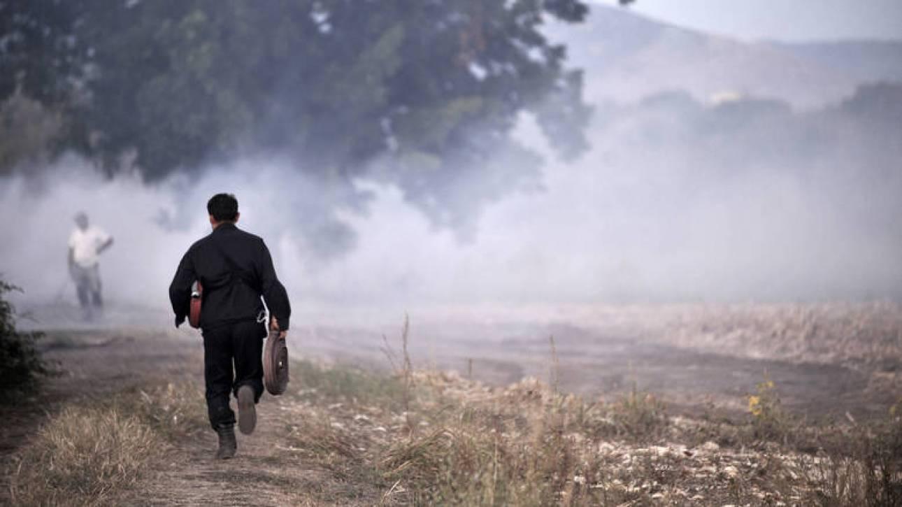 Χαλκιδική: Μεγάλη φωτιά στο Καλαμίτσι