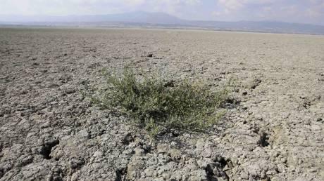 Προειδοποίηση: Με «ερημοποίηση» κινδυνεύει το ένα τρίτο των εδαφών της Ελλάδας