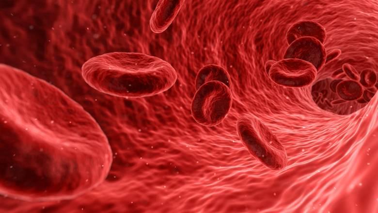 Δώδεκα τροφές για να ενισχύσετε το χαμηλό αιματοκρίτη σας