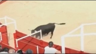 Βίντεο-σοκ:Ταύρος σκότωσε εθελοντή σε φεστιβάλ στην Ισπανία