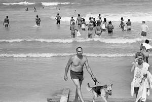 1964, Φλόριντα.  Ένας αστυνόμος με σκύλο περιπολεί στην παραλία του Αγίου Αυγουστίνου, στη Φλόριντα, καθώς στο βάθος μαύροι και λευκοί κολυμπούν μαζί για δεύτερη μέρα.