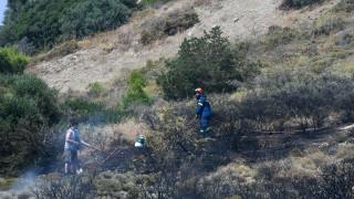 Λαγονήσι: Υπό μερικό έλεγχο η πυρκαγιά - Δεν απειλούνται σπίτια