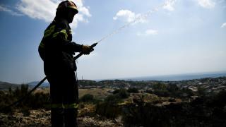 «Δεν κατάλαβα πώς έγινε»: Τι είπε ο μελισσοκόμος που φέρεται να ευθύνεται για τη φωτιά στο Λαγονήσι