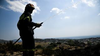 Υψηλός ο κίνδυνος πυρκαγιάς σήμερα