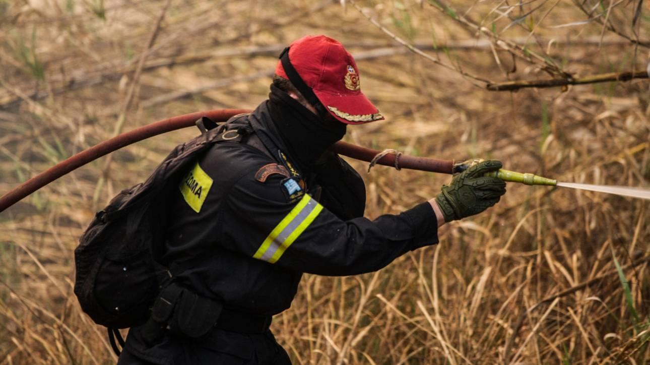 Υπό μερικό έλεγχο η φωτιά στην Κυρά Βρύση Κορίνθου