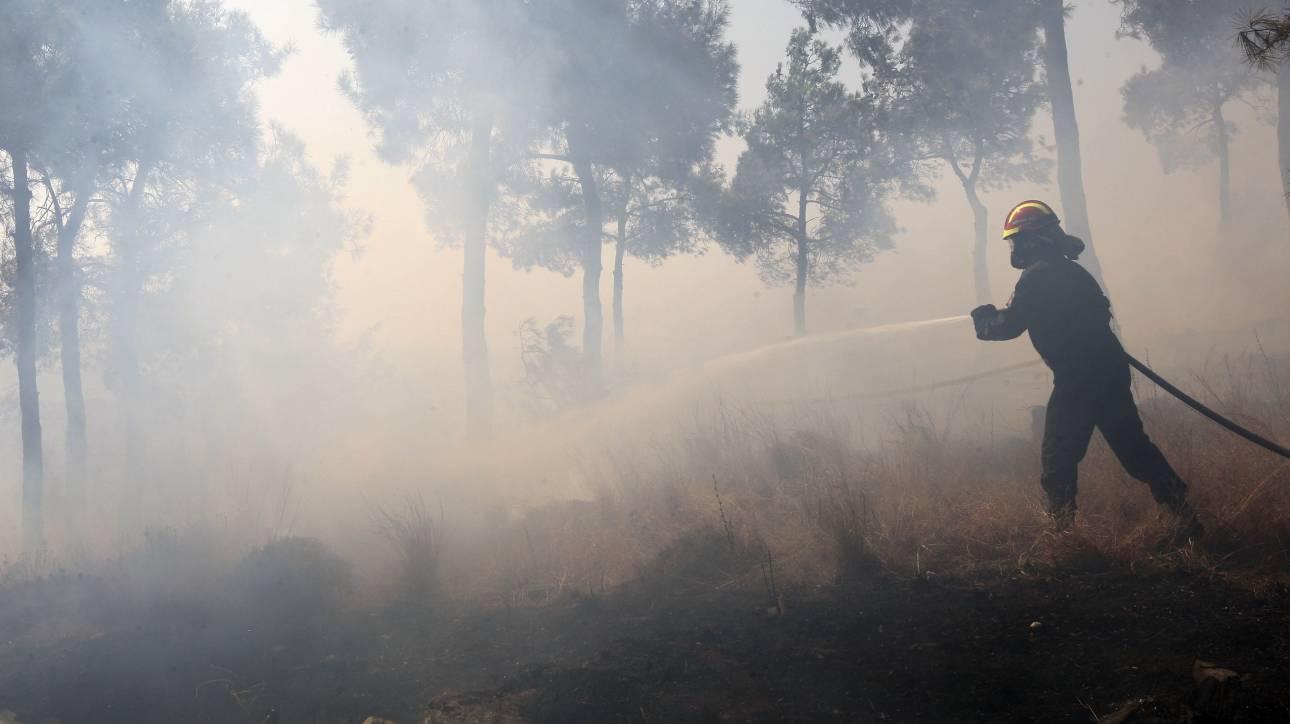 Θεσσαλονίκη: Φωτιά στο δάσος του Σέιχ Σου από κεραυνό