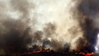 Πύρινη «κόλαση» στην Καταλονία: Μεγάλη πυρκαγιά εν μέσω καύσωνα και ισχυρών ανέμων