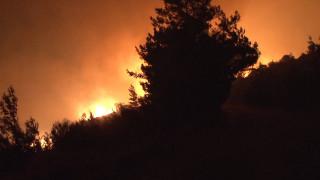 Εύβοια: Μεγάλη φωτιά στην Κάρυστο