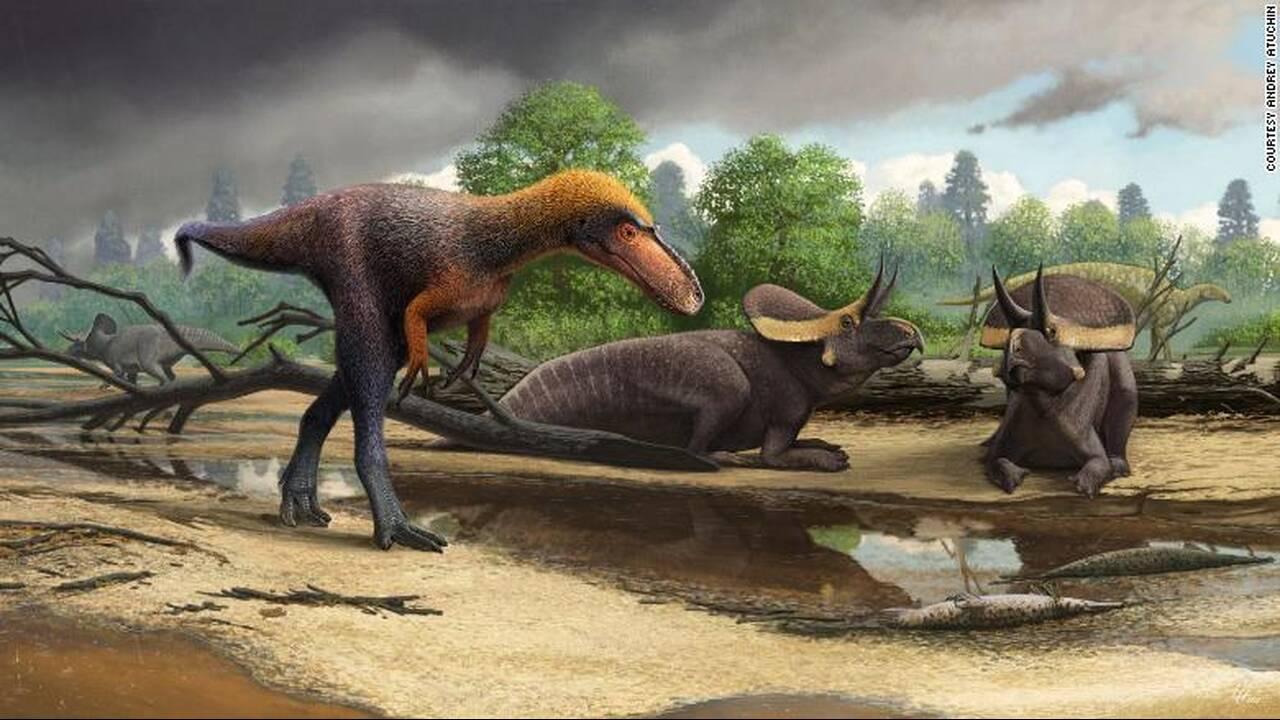 https://cdn.cnngreece.gr/media/news/2019/06/27/182242/photos/snapshot/190506104933-03-ancient-finds-dinosaur-exlarge-169.jpg