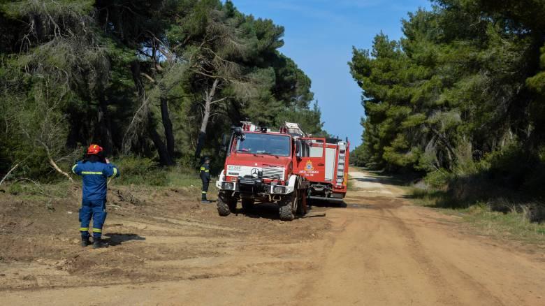 Καλάβρυτα: Φωτιά στην περιοχή του Πεύκου