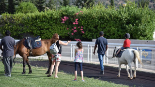 Markopoulo Park: Συναρπαστικό θέαμα και μεγάλα κέρδη στο Σκορ 6