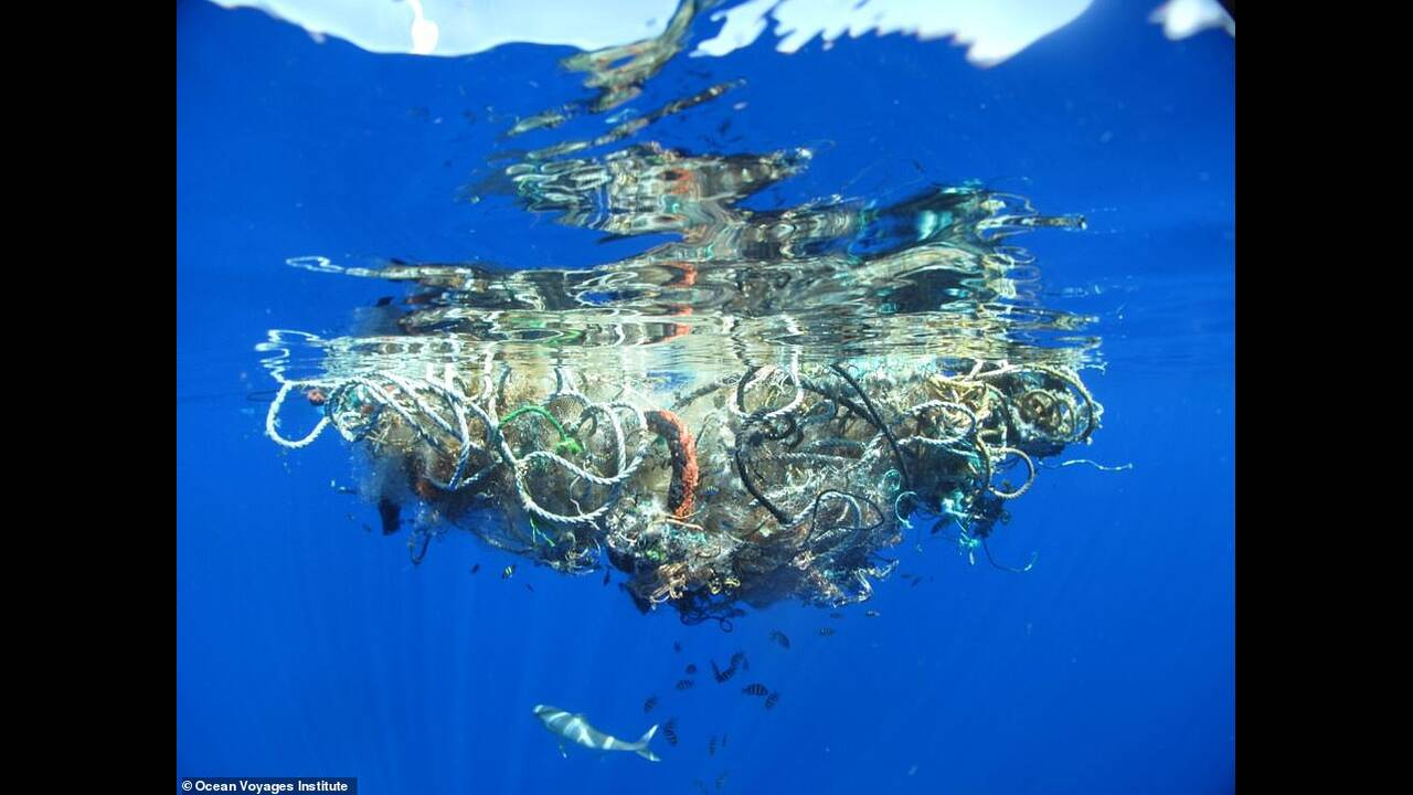 https://cdn.cnngreece.gr/media/news/2019/07/02/182886/photos/snapshot/ocean-ekso.jpg
