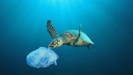 Παγκόσμια Ημέρα Κατά της Πλαστικής Σακούλας: Μείωση της ποσότητας αλλά όχι και της εξάρτησης