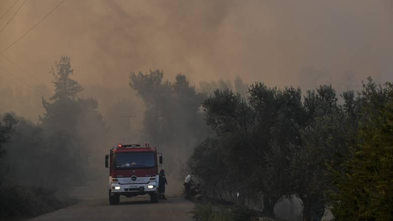 Μεγάλη φωτιά στην Εύβοια - Εκκενώθηκε το Μακρυχώρι