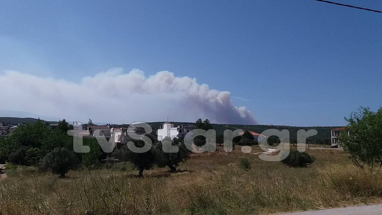 https://cdn.cnngreece.gr/media/news/2019/07/05/183209/photos/snapshot/fotiamanik1.jpg