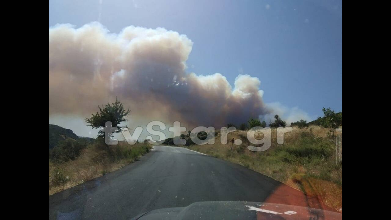 https://cdn.cnngreece.gr/media/news/2019/07/05/183209/photos/snapshot/fotiamanik2.jpg